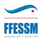 logo ffessmm